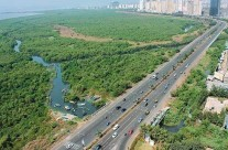LBT for Navi Mumbaikars has been reduced by 0.5% from the 2%
